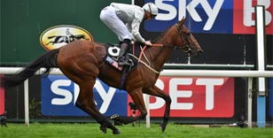 Two year old contests at the Welcome to Yorkshire Ebor Festival promise much