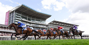PROSCHEMA TO TACKLE £100,000 RACEBETS HANDICAP AT YORK