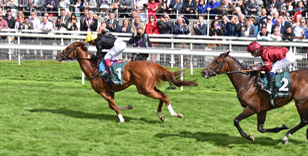 YORK RACECOURSE SEASON COMES TO A ROUSING CONCLUSION