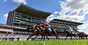 THE 2019 SEASON AT YORK RACECOURSE EXEMPLIFIES THE DECADE