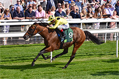 PRIZE MONEY TO RISE TO £1,000,000 FOR THE JUDDMONTE INTERNATIONAL AT YORK