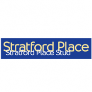 Stratford Place Stud