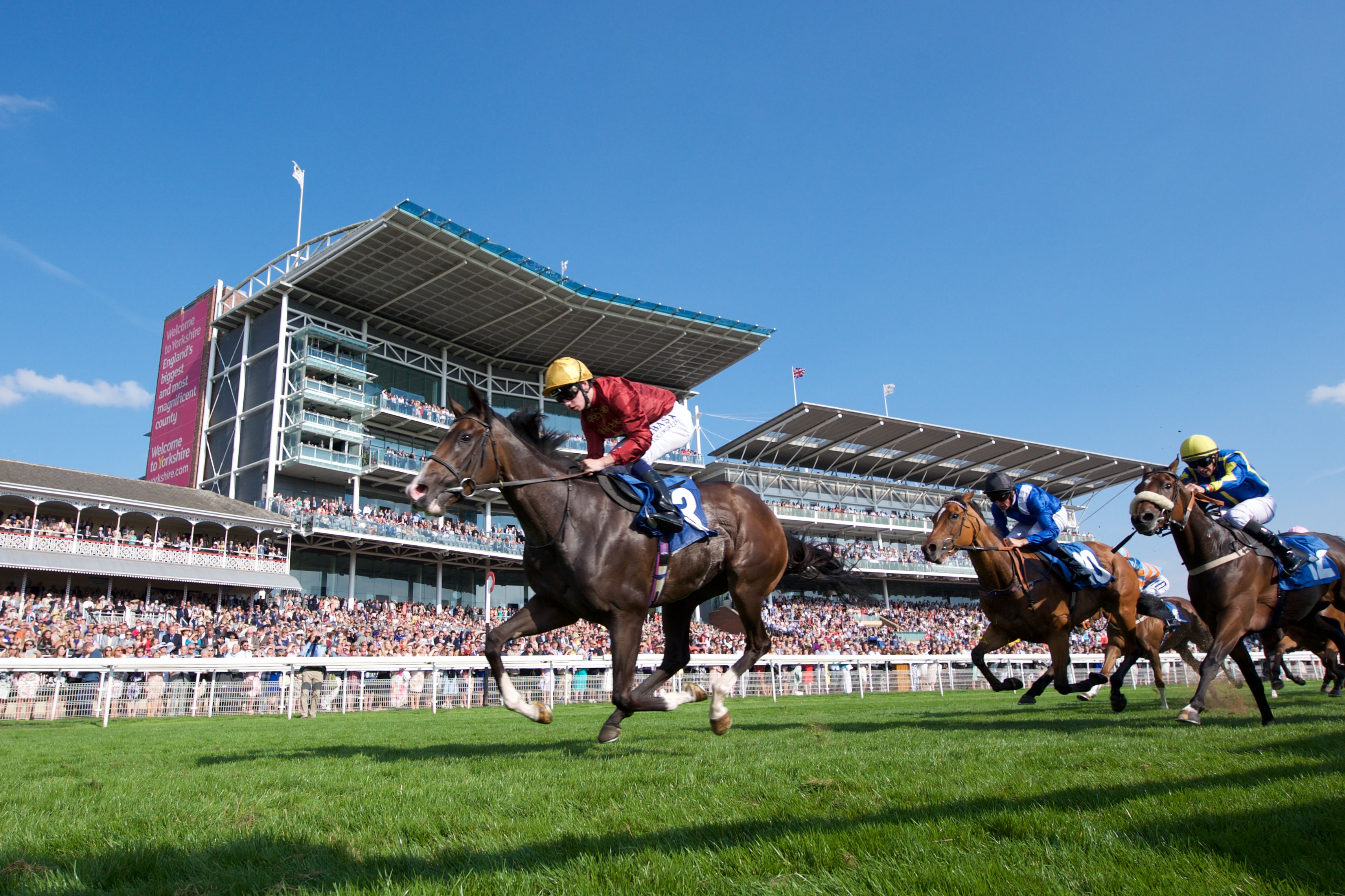 York Racecourse voted best track in Britain | York Racecourse
